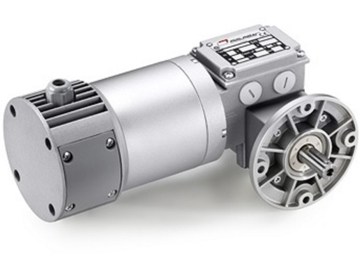 MCCE WORM SCREW GEAR MOTOR WITH PLANETARY REDUCTION GEAR MP